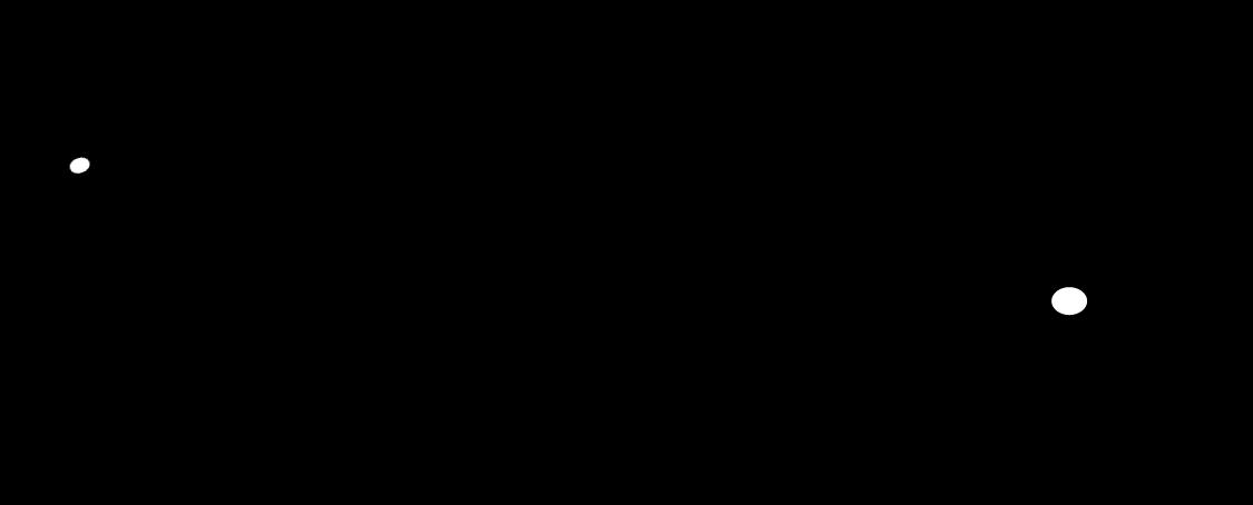 huamlogo1